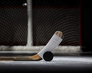 Hockey Stick/Puck
